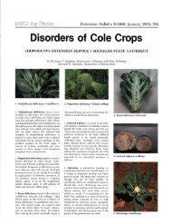 Disorders of Cole Crops - Michigan State University