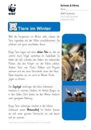Tiere im Winter - WWF Schweiz