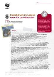 Fussabdruck im Lebens- raum Eis und Gletscher - WWF Schweiz