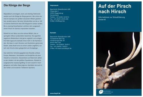 Schaufütterung Vorderriß Anfahrt - Bayerische Staatsforsten