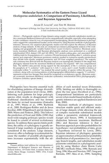 Molecular Systematics of the Eastern Fence Lizard ... - Bama.ua.edu
