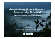 Genetisch modifizierte Bäume – Panazee oder Alptraum? - BFW