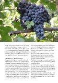 Triacca - aus Weinbuch 2013_WebVersion - Seite 6