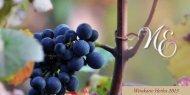 Weinkarte Herbst 2013 - Weingut Neef-Emmich