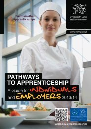 Download the Apprenticeship Pathway leaflet ... - Business Wales
