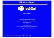 Grundlagen der funktionellen Kernspinresonanz-Bildgebung, M ...