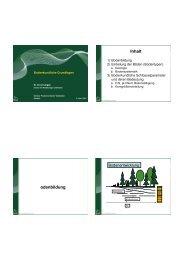 Bodenkundliche Grundlagen - BFW