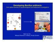 Genotyping Bacillus anthracis: