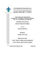 universidad veracruzana facultad de odontología región poza rica