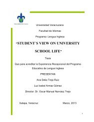 student´s view on university school life - Universidad Veracruzana