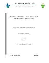 Métodos y adherentes para la inoculación micorrízica del maíz en ...