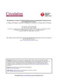 Morphologic Correlates of Technetium-99m Stannous ... - Circulation