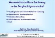 Wasserwirtschaftliche Sanierung in der ... - LMBV