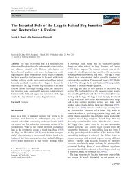 The Essential Role of the Lagg in Raised Bog ... - IngentaConnect