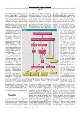 Hereditäre Tubulopathien mit Diuretika-ähnlichem Salzverlust - Seite 4