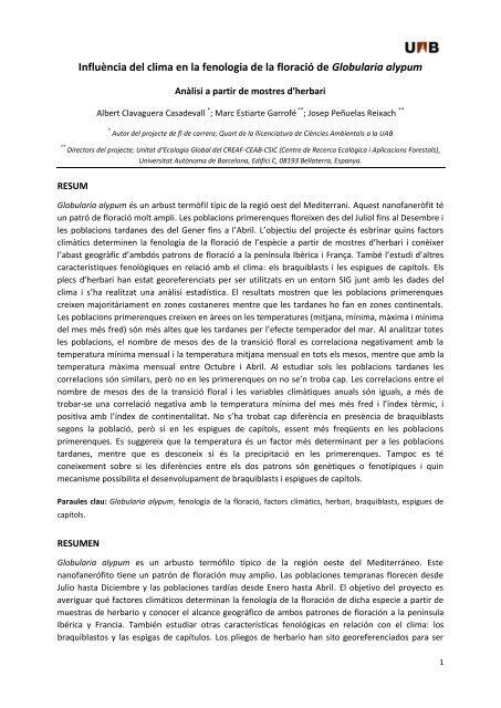 Influència del clima en la fenologia de la floració de Globularia alypum