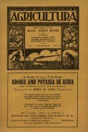 ADOBEU AMB POTASSA DE SURIA