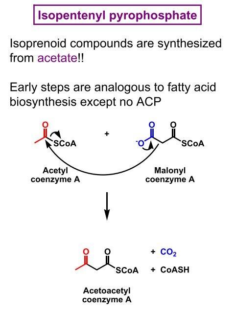 Lipids Part B