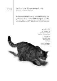 präferenzen besenderter Wildkatzen (Felis silvestris silvestris ...