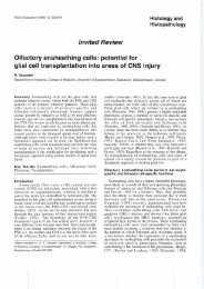 ln vited Re vie w Olfactory ensheathing cells: potential for ... - Digitum