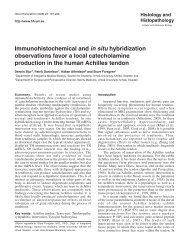 Immunohistochemical and in situ hybridization ... - Digitum