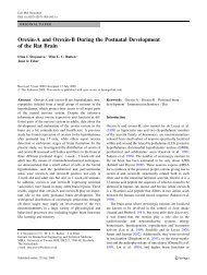 Orexin-A and Orexin-B During the Postnatal Development of the Rat ...