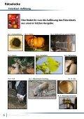 Exklusiv-Workshop Nachtfotografie - PSD-Tutorials.de - Page 6