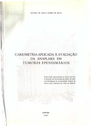 ANTONIO DE PADUA GOMES DA SILVA_1987.pdf - DSpace