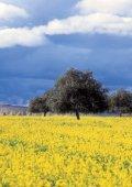 und Umgebung PDas Reich der Aphrodite - Cyprus Tourism ... - Seite 6