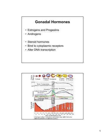 Gonadal Hormones - E-Lib FK UWKS