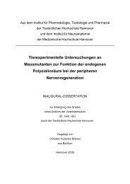 Tierexperimentelle Untersuchungen an Mausmutanten zur Funktion ...