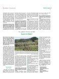 Politisch angespannte Situation der Jagd in Schleswig-Holstein - Seite 2