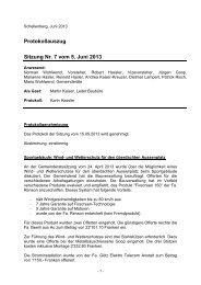Protokollauszug Sitzung Nr. 7 vom 5. Juni 2013