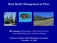 Bark Beetle Management in Pines - Oregon State University ...