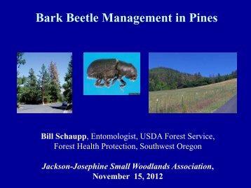 Bark Beetle Management in Pines - Oregon State University ...