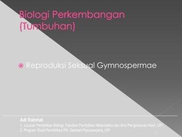 Reproduksi Seksual Gymnospermae - File UPI