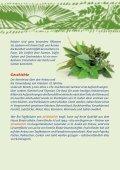 Kräutervielfalt - Ja! Natürlich - Seite 2