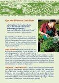 Kräutervielfalt - Ja! Natürlich - Seite 3