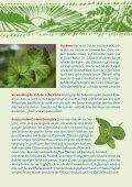 Kräutervielfalt - Ja! Natürlich - Seite 4