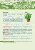 Kräutervielfalt - Ja! Natürlich - Seite 5