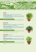 Kräutervielfalt - Ja! Natürlich - Seite 7