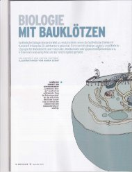 MIT BAUKLOTZEil - Sparkling Science