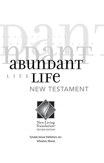 Abundant Life Bible New Testament - Bibles At Cost