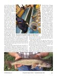 The Commission's Walleye Stocking Program - Pennsylvania Fish ... - Page 2