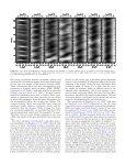 SHORT DYNAMIC FIBRILS IN SUNSPOT CHROMOSPHERES ... - Page 7