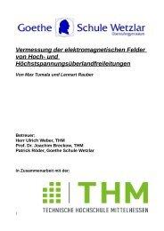 Vermessung der elektromagnetischen Felder von Hoch- und ...