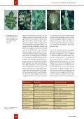 Lernort Boden - GEONExT - Seite 4