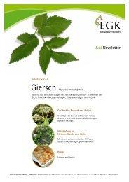 Giersch - EGK-Gesundheitskasse