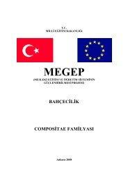 Compositae Familyası - Hayat Boyu Öğrenme Genel Müdürlüğü ...