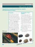 BIOLOGY IN FOCUS - Page 4